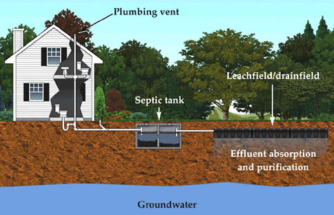 State environmental services for Typical septic system